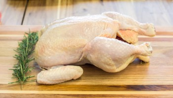 Chicken WOG